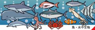 魚 水中生物