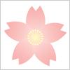 桜 サクラ イラレ・ベクトルデータ【無料配布】