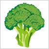 茹でて美味しいブロッコリー イラレ・ベクトルデータ【無料配布】