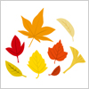 赤や黄色に色づいた葉のイラスト 紅葉イラレデータ