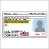 何かと活躍する運転免許証のイラスト素材