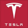 テスラモーターズ(Tesla Motors)のロゴ