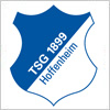 TSG 1899ホッフェンハイムのロゴマーク