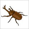 夏の昆虫、カブトムシのイラスト