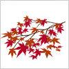 紅葉した、かえでの秋素材イラスト