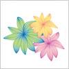 色鮮やかな花のイラスト