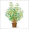 緑々しい植木のイラスト
