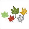 楓の葉っぱのイラスト