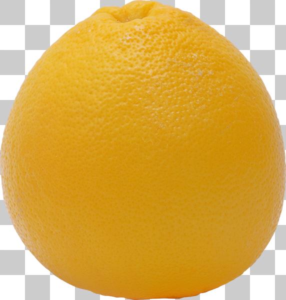 グレープフルーツの切り抜き透過画像