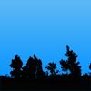 影に染まる木々の切り抜き画像
