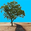 カート道と樹木の切り抜き画像