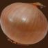 玉ねぎの切り抜き画像