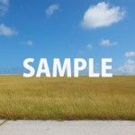 青い空と草原と舗装された道路