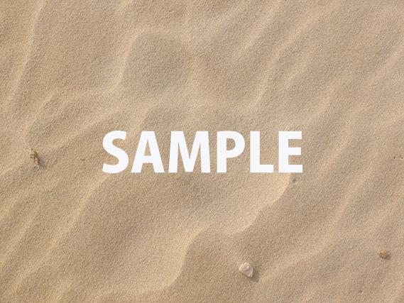 キレイな砂浜