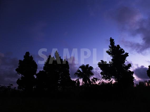 日没 紫に染まる空