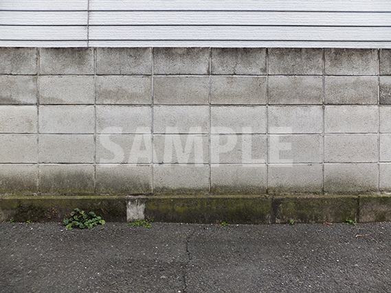 ブロック塀とアスファルトから芽を出す雑草