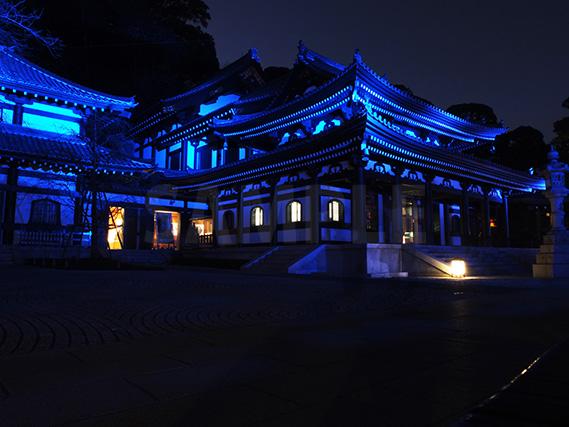 青色にライトアップされた鎌倉の長谷寺