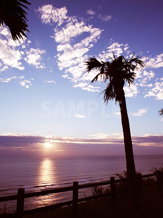 奄美大島・大浜海浜公園・見晴らし広場から見るサンセット
