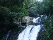 奄美大島・アランガチの滝