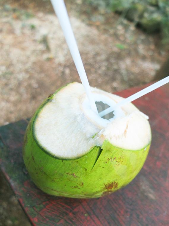 採れたてのココナッツジュース