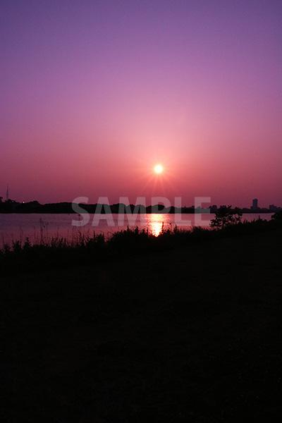 紫のフィルター越しのサンセット写真・フォトデータ