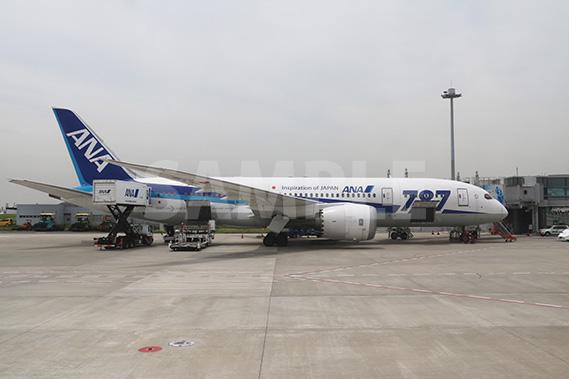 ANAのボーイング787中型ジェット旅客機