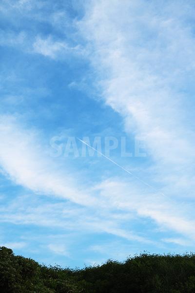 青い空と飛行機雲