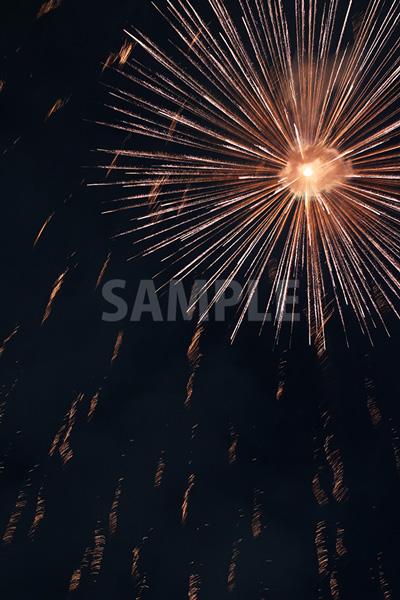 直線的に放射状に広がる花火
