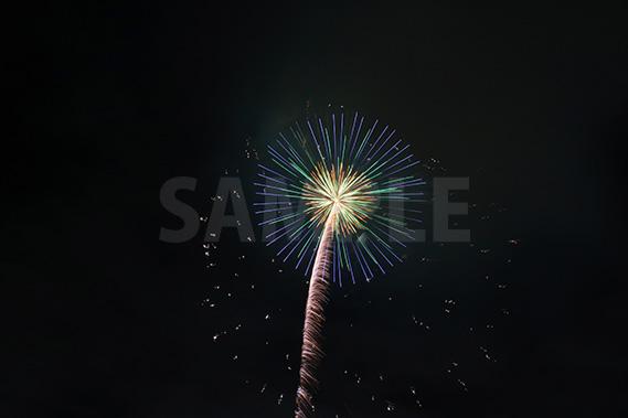 椰子の木のようにも見える花火
