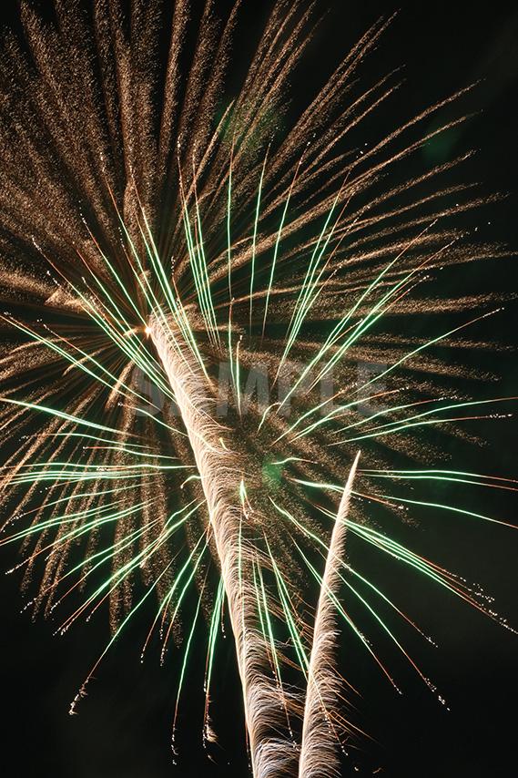 ヤシの木を下から覗くような打ち上げ花火