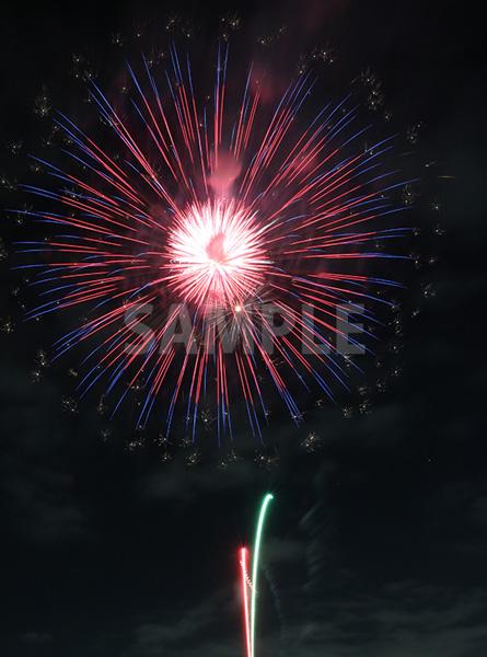 ピンク・青色の打ち上げ花火
