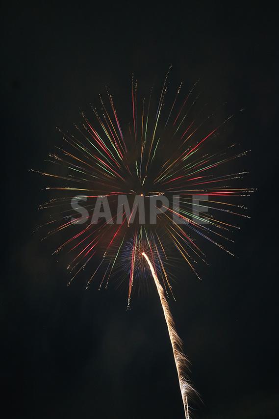 カラフルな配色の打ち上げ花火