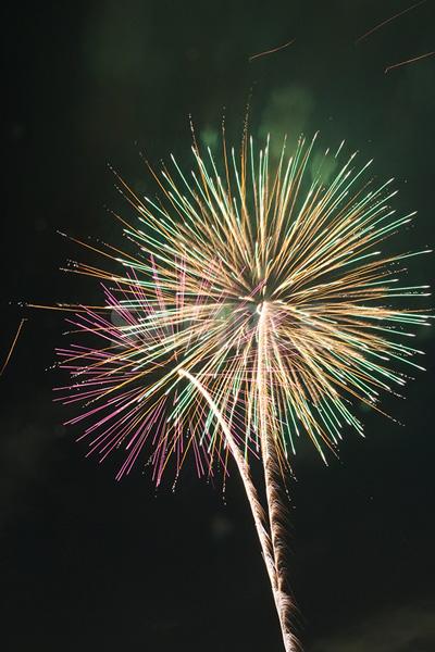 グラデーションが鮮やかな打ち上げ花火