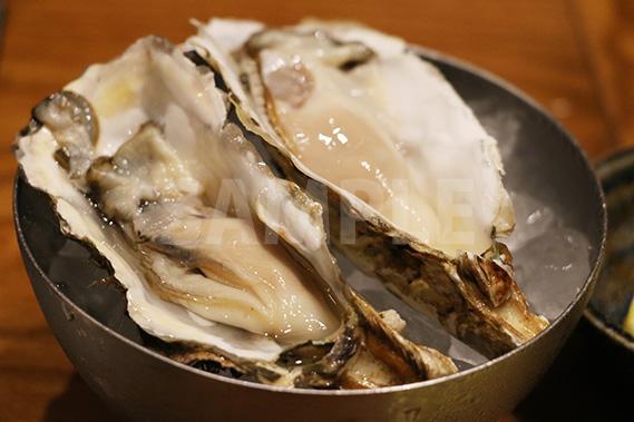 新鮮な牡蠣の写真・フォト素材