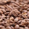 中央にピンのあるコーヒー豆の写真(横)