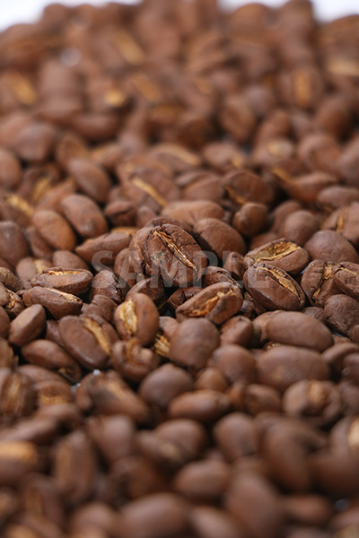 中央にピンのあるコーヒー豆の写真(縦)