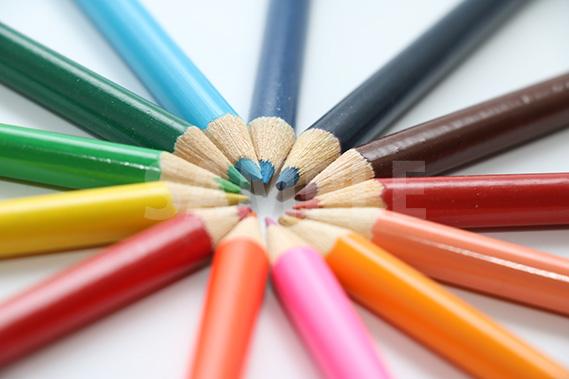 斜め上から見た放射状に並ぶ色鉛筆の写真(横)
