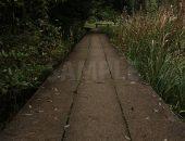 石でできた遊歩道の写真