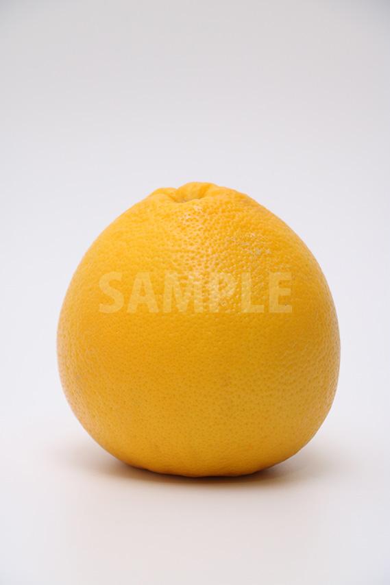 横から見たグレープフルーツの写真