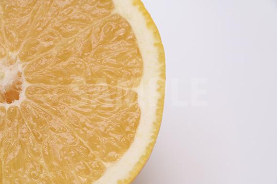 グレープフルーツの断面写真(一部)