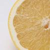 グレープフルーツの断面写真(縦・一部)