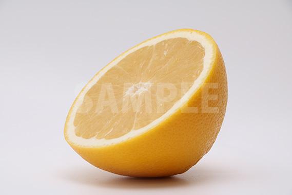 左斜めを向くカットグレープフルーツの写真