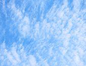 秋の青い空と巻積雲の写真