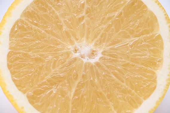 グレープフルーツの断面写真(寄り)