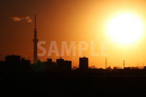 スカイツリーと夕日の写真・フォト素材