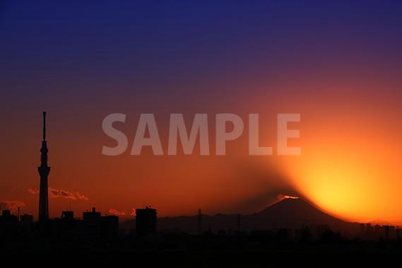 スカイツリーと富士山と日没の写真・フォト
