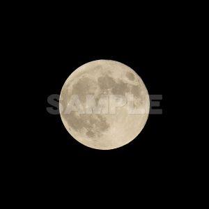 満月「スーパームーン」2015年 夜空,満月,スーパームーン,2015年,moon,Month,Canon,EOS Kiss X5