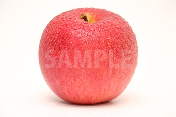 濡れたりんごの写真・フォト