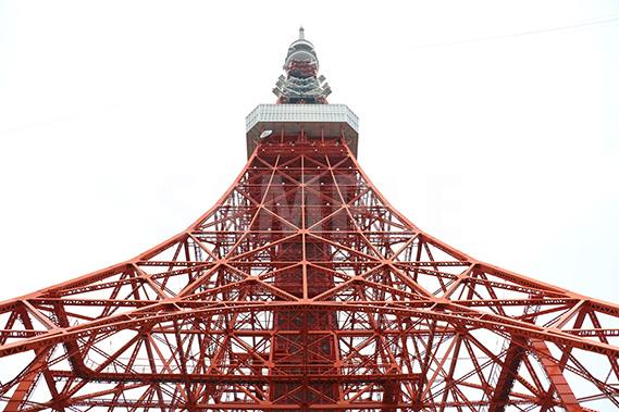 東京タワーを見上げた写真・フォト