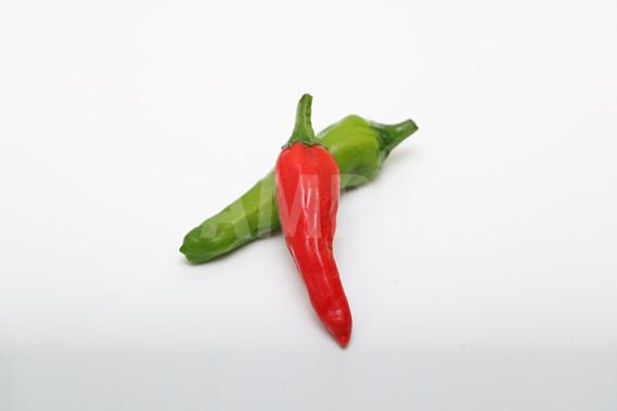 緑と赤の唐辛子の写真・フォト素材